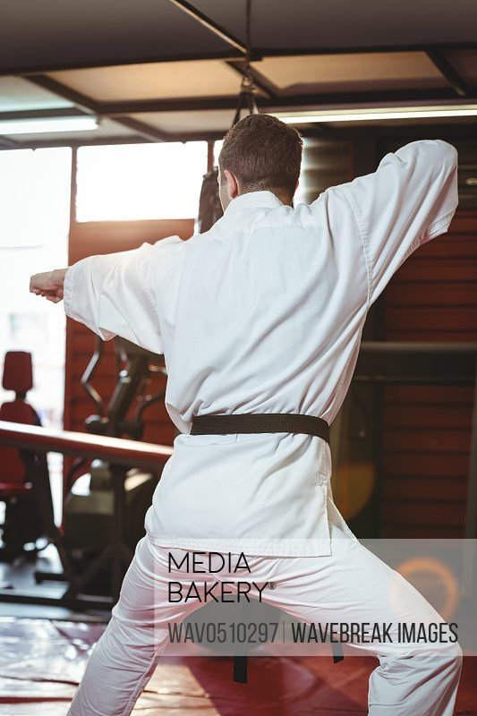 Rare view of karate player performing karate stance in fitness studio