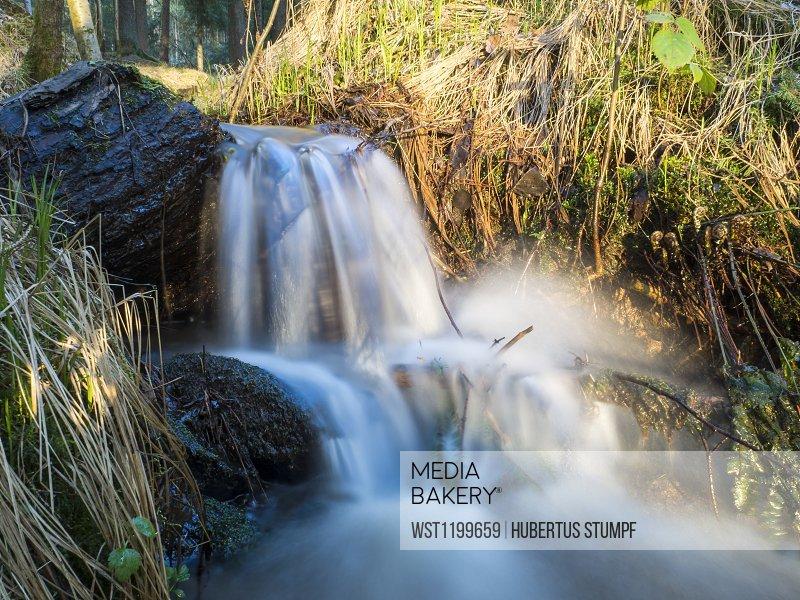 Germany, Bavaria,Long exposure of splashing stream in Upper Palatinate Forest