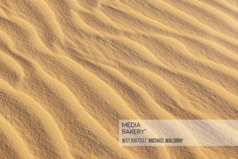 Detail of sand dune