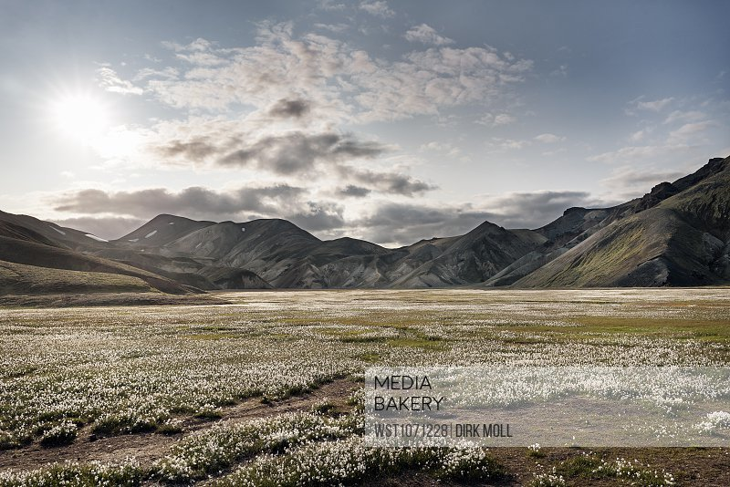 Iceland, South West, Landmannalaugar, highland