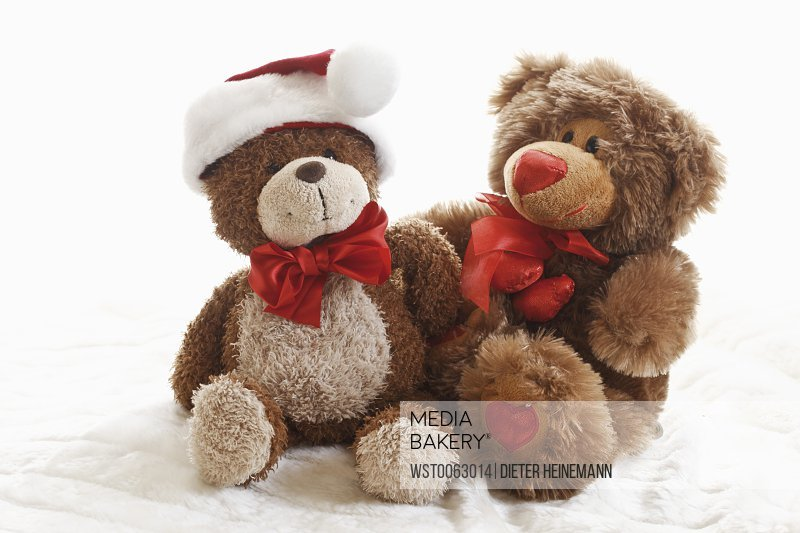 Teddy bear wearing christmas cap