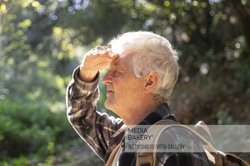 Profile of senior man hiking in forest shielding his eyes