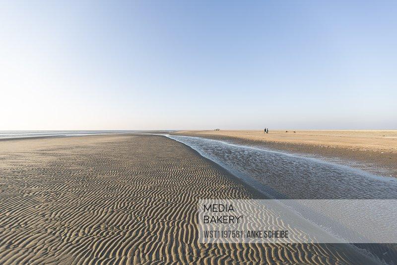 Denmark, Romo, Clear sky over rippled beach