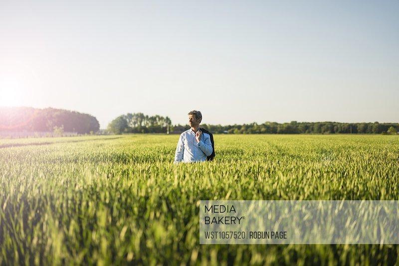 Businessman standing in grain field