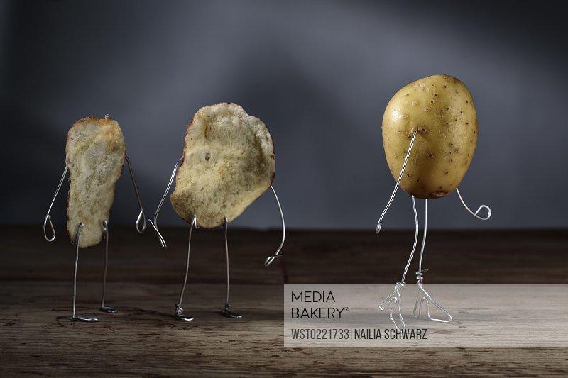 Sexy girls and potato chip videos