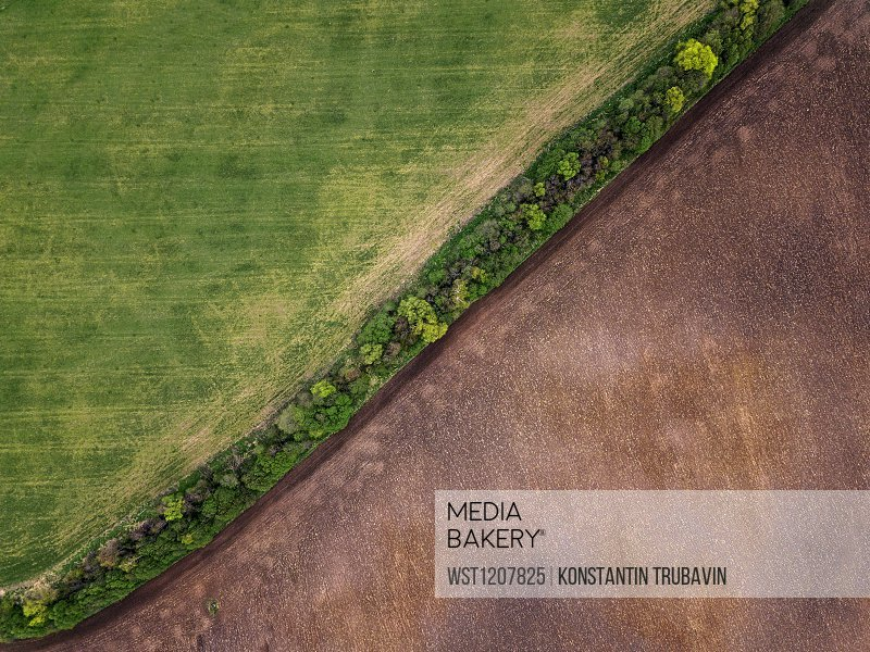 Russia, Moscow Oblast, Aerial view of green and brown countryside fields