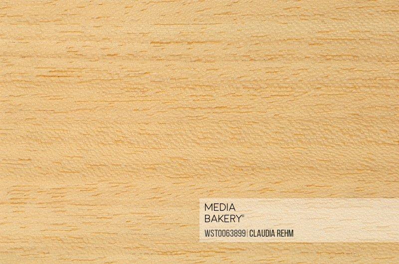 Wood surface, Koto Wood (Pterygota macrocarpa), full frame