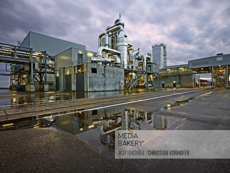 Romania, Radauti, timber industry