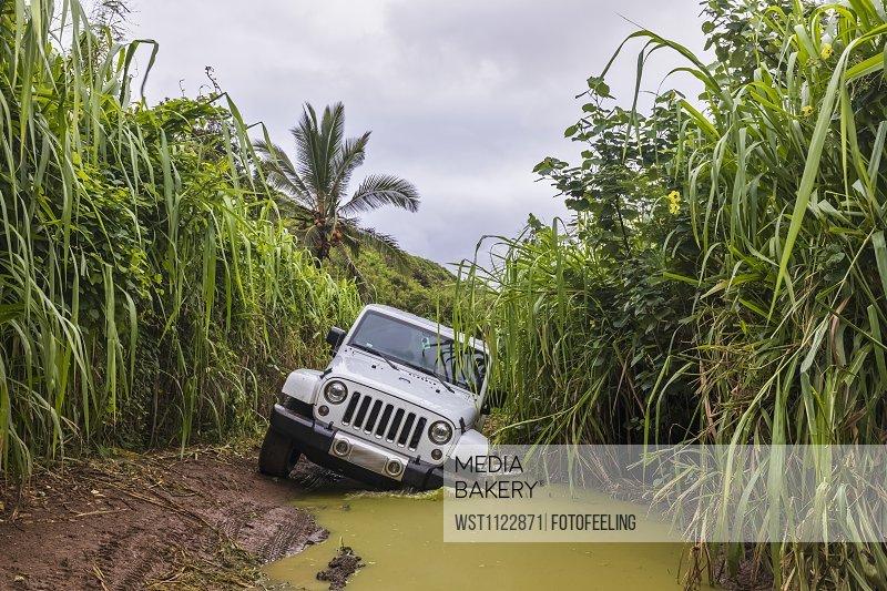 USA, Hawaii, Kauai, off-road vehicle on muddy dirt road, puddle